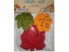 1 package of felt leaves (20) (REDUCED)
